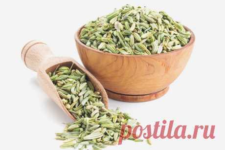 9 удивительных преимуществ семян фенхеля для кожи, волос и здоровья