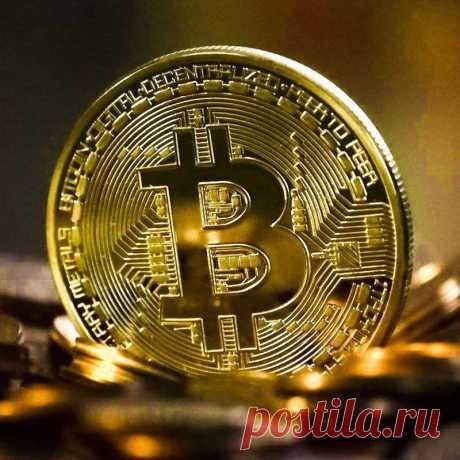 104.13руб. 11% СКИДКА Креативная биткоиновая монета, сувенир, позолоченный коллекционный подарок, бита, эфириум, литекойн, художественная коллекция, физическая памятная монета Безвалютные монеты      АлиЭкспресс Покупай умнее, живи веселее! Aliexpress.com