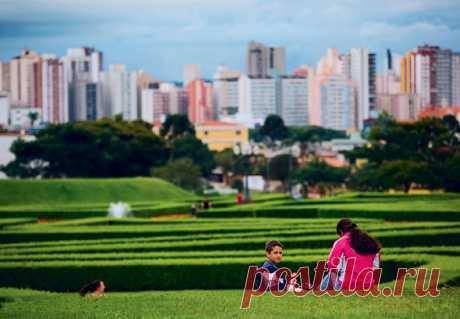 Curitiba — the city of the lost ideas | Publications | Round the world