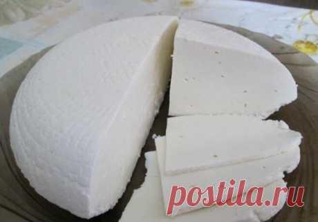 Осетинский сыр (типа брынзы, адыгейского или фетаксы) из молока и кефира своими руками: показываю как его сделать дома | Кулинарные записки обо всём | Яндекс Дзен