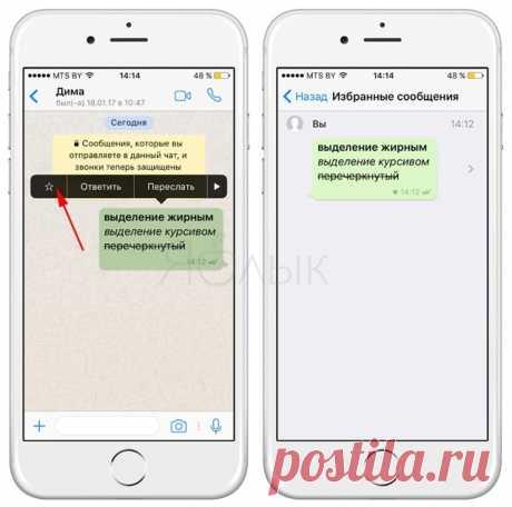 Полезные опции WhatsApp, которые следует знать каждому