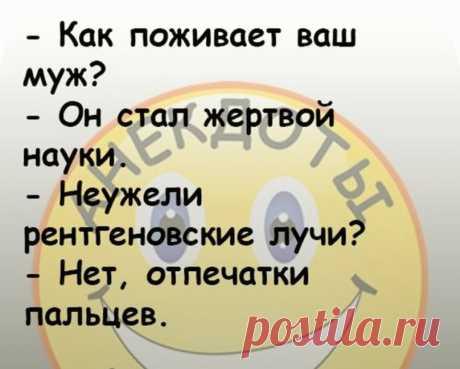 Отборные анекдоты из самых свежих #54 | Даня шутит | Яндекс Дзен