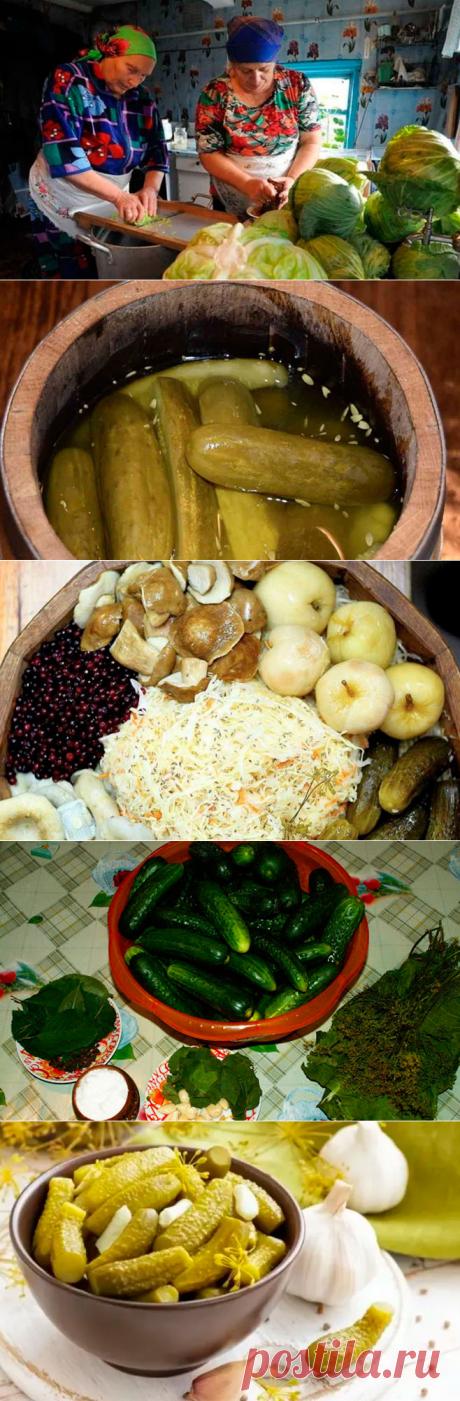 Наши предки не солили овощи на зиму... они их квасили! И польза от этого просто огромная!