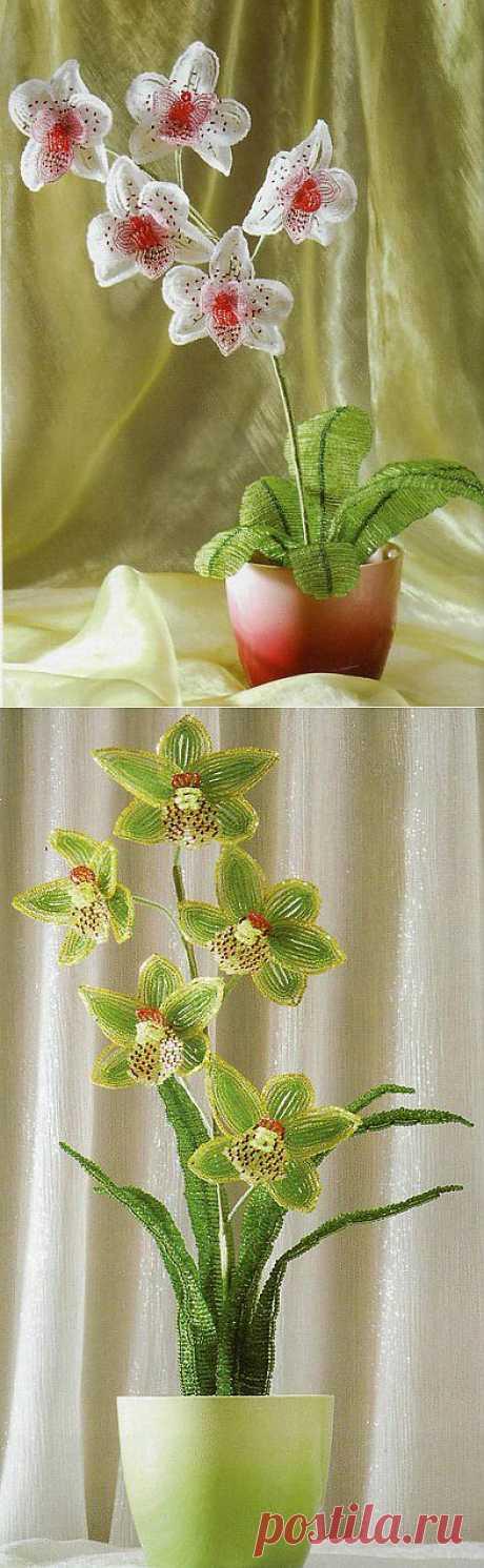 Орхидея из бисера своими руками.