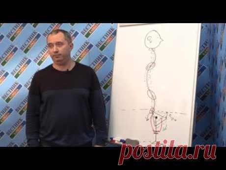 Доктор Шишонин: Позвоночник нужно рассматривать как единый орган