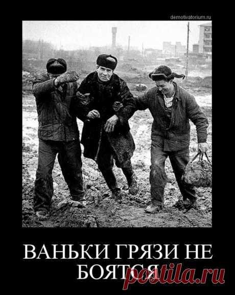 Новые демотиваторы-приколы / Приколы