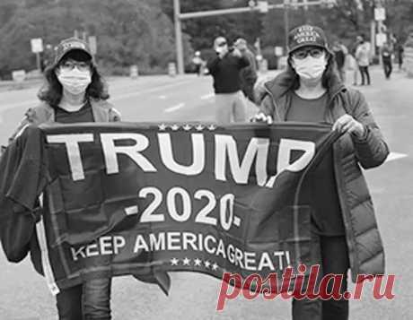 Трамп отстает, но выигрывает - Ваше мнение - медиаплатформа МирТесен