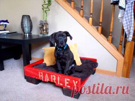 🐶 Лежанка для собаки своими руками: варианты моделей, выкройки, раскроя и пошива