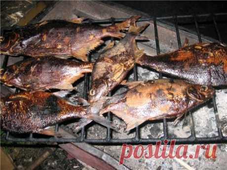 Как изготовить домашнюю коптильню  Копченые продукты не обязательно покупать, можно приготовить их самостоятельно. Для этого на даче стоит сделать домашнюю коптильню, и в любое время вы сможете готовить вкуснейшую рыбу, мясо, птицу и даже овощи.