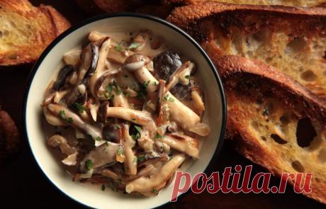 Полный восторг: 10 классных рецептов с грибами Осень — сезон грибов! Лисички, опята, вешенки — их вкус и аромат способны растопить сердце даже самого избирательного гурмана. Рассказываем, какие грибные блюда готовить в этом сезоне.
