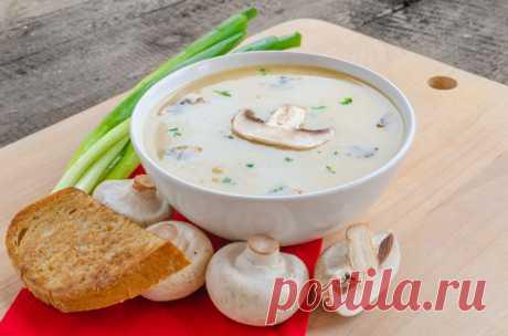 6 лучших оригинальных грибных супов     Грибы и суп — понятия столь близкие по духу, что грибным супам можно посвящать толстые кулинарные книги. Самобытный вкус грибов, будь это дикие лесные сорта или аккуратные фермерские продукты, уди…