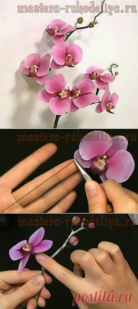 Мастера рукоделия - рукоделие для дома. Бесплатные мастер-классы, фото и видео уроки - Мастер-класс по керамической флористике: Орхидея из полимерной глины