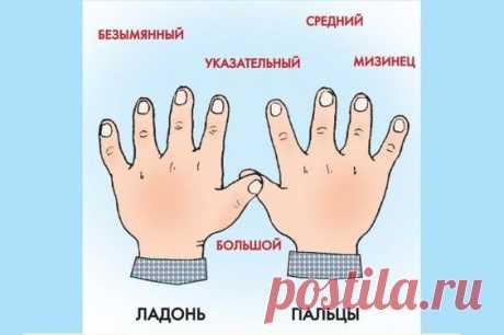 КАК ЗОВУТ ВАС, ПАЛЬЧИКИ?) КАК ЗОВУТ ВАС, ПАЛЬЧИКИ?)Я на пальчиках считалаИ ужасно хoxoтала:Разве это пальчики?Это ж просто мальчики!Вот БОЛЬШОЙ – большой чудак!Любит хвастать просто так.Как дела? – спроси его.Он подпрыгнет, кр…