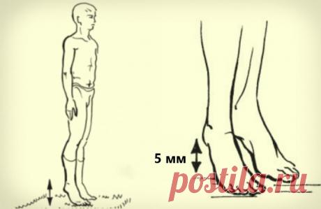 Как защитить себя от тромбов и инсульта, упражнение академика Микулина ? | #ДОМСОВЕТОВ# | Яндекс Дзен