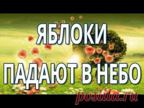 23. Вадим Зеланд - Яблоки падают в небо.