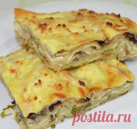 Запеканка из лаваша с сыром и грибами / Видео-рецепты / TVCook: пошаговые рецепты с фото