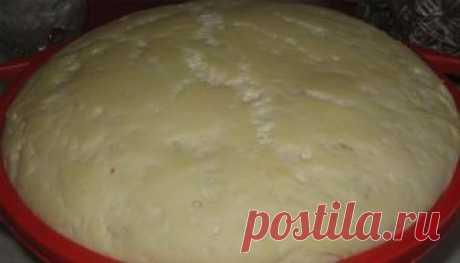 Тесто на беляши - пошаговые рецепты. Как приготовить вкусное тесто на беляши быстро и просто, видео