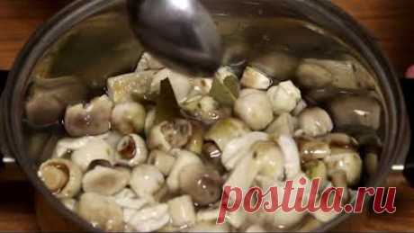 Маринованные грибы на зиму.Самый вкусный маринад для грибов на зиму.