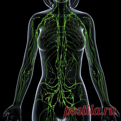 Средство для очищения крови, лечения гипертонии,аритмии и ещё многих заболеваний