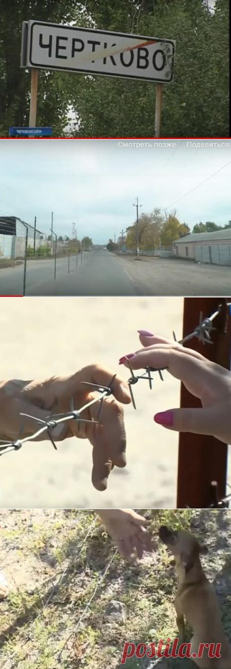 Как граница поделила поселок Чертково и что из этого получилось | путешествуем онлайн | Яндекс Дзен