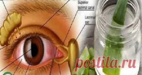 Попрощайтесь с очками и улучшите ваше зрение с этим удивительным рецептом!
