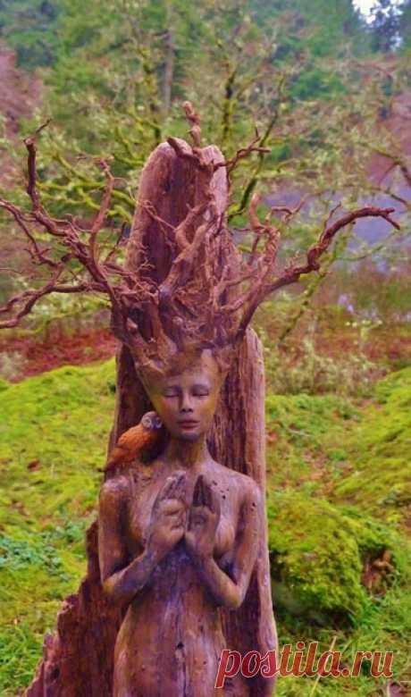 Душа внутри деревьев:потрясающие скульптуры из обычных коряг от Дебры Бернье