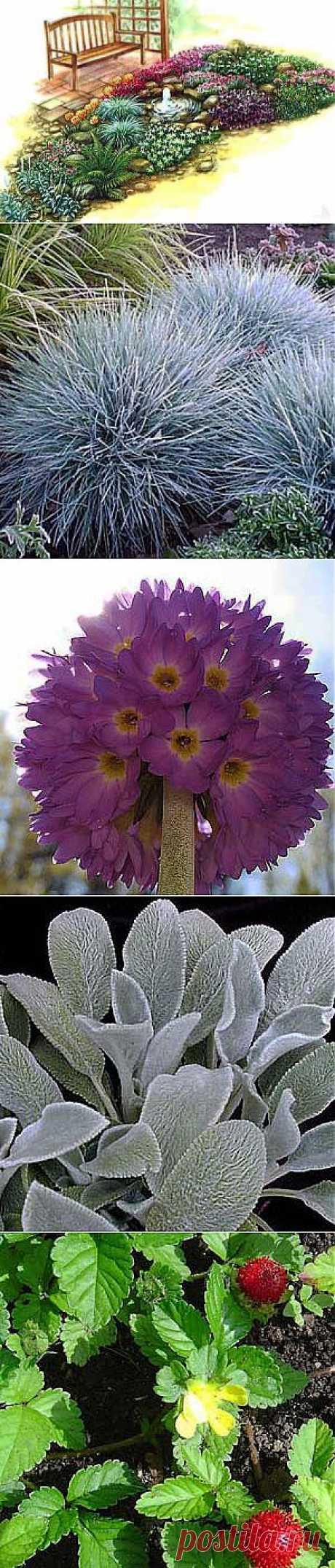 """Красивый цветник """"Розовые мечты"""" с маленьким фонтаном"""