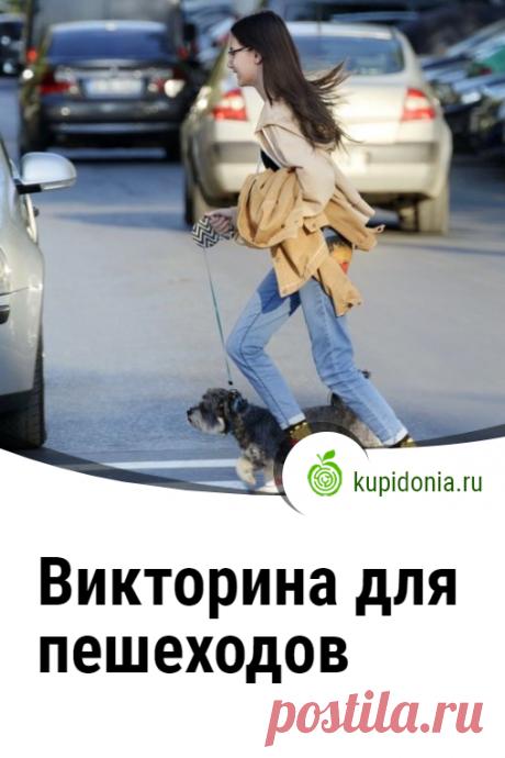 Викторина для пешеходов. Проверочный тест-викторина для детей о правилах дорожного движения для пешеходов. Проверь свои знания!