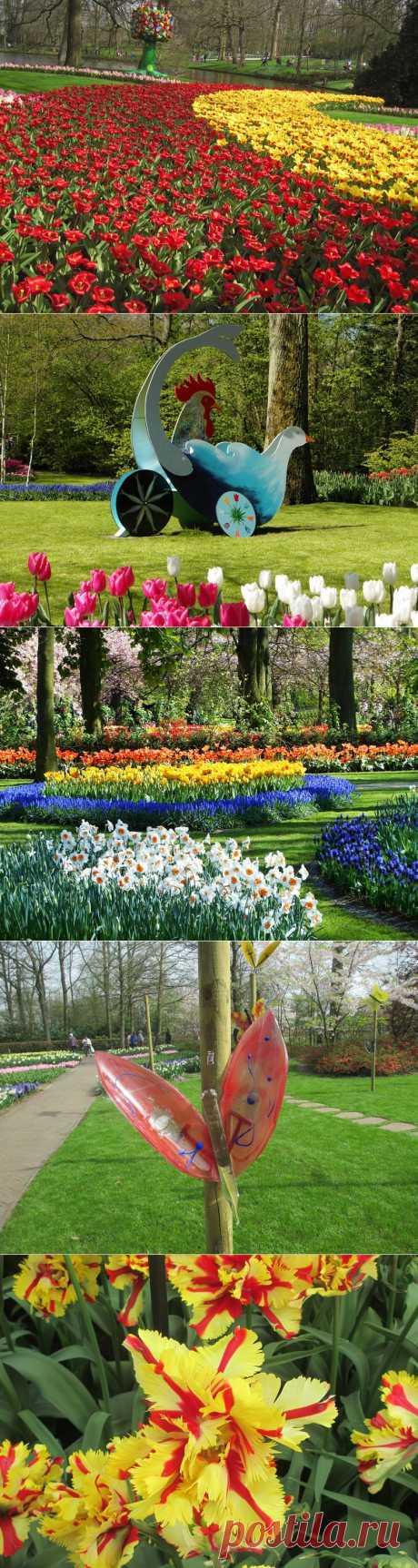 Королевский парк цветов : Кейкенхоф 2014 | В мире интересного