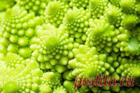 Полезные свойства капусты романеско Полезные свойства капусты романеско  Удивительное растение – капуста романеско – не может не привлечь внимание своим видом. Причудливые пирамиды соцветий, располагающиеся по спирали, напоминают зар…