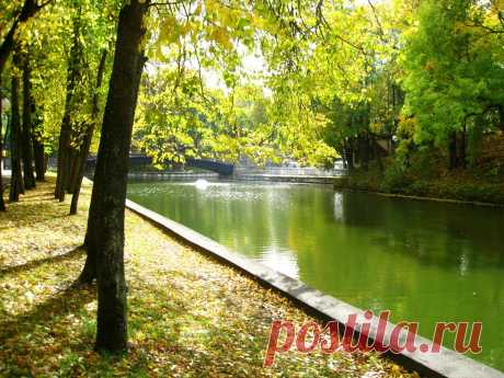 Пруд в Лопатинском саду в Соленске.   ----     Pond In Lopatinsky  Garden  Free Stock Photo HD - Public Domain Pictures