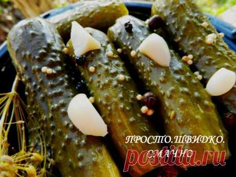 Консервированные огурцы на зиму - Простые рецепты Овкусе.ру