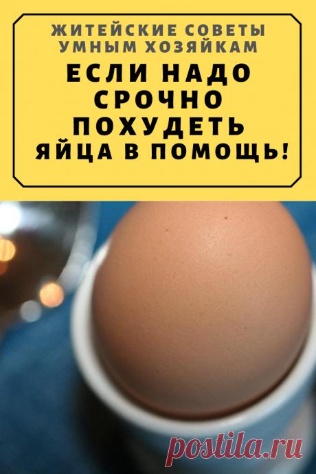 Если надо срочно похудеть. Яйца в помощь! Знала ты об этом?!   Житейские Советы