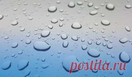 Вывести на чистоту: как САМИМ проверить качество воды на даче | 6 соток