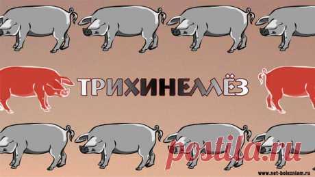 ТРИХИНЕЛЛЫ - ПАРАЗИТЫ, СКРЫВАЮЩИЕСЯ В СВИНИНЕ  Многим из нас в детстве, мамы говорили что сырое, недоваренное или недожаренное мясо является опасным для здоровья.  Если вы смотрели фильм Мамы (год выпуска: 2012), то в одном из эпизодов персонаж, исполненный Михаилом Пореченковым, отказывается от суши из-за того что сырая рыба - опасна из-за глистов. Кстати он знает это от своей мамы. Мамы знают что говорят.  Но не расслабляйтесь, не только сырая рыба может быть опасной. Ес...