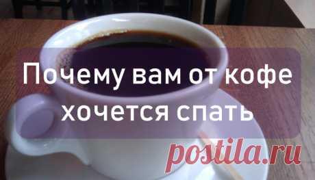 Леди Красота | Почему от кофе хочется спать Зачем мы пьем кофе? Кроме того, чтобы насладиться вкусом этого чудесного напитка и его вариаций? Конечно для того, чтобы получить бодрость и повысить работоспособность! Это работает для большинства…
