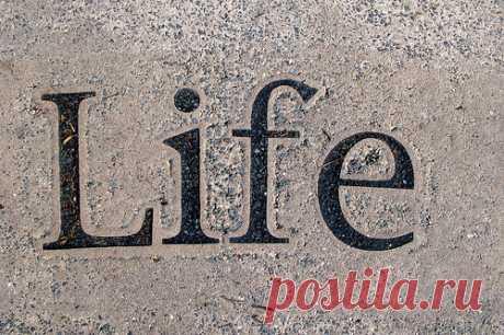 Жизнь   Блог одной Леди - Любовь, Страсть, Дружба, Жизнь