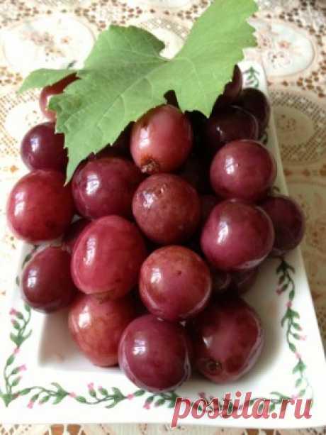 Маринованный виноград – рецепт от свекрови