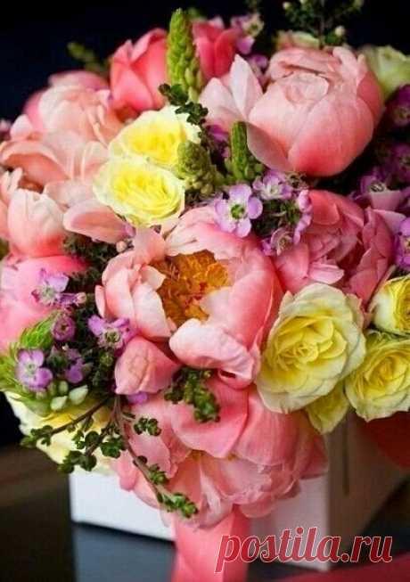Расцветайте, как цветы. Жизнь неповторима. Без колебания превращайте ее в яркие и большие соцветия. Пусть прекрасные цветы распускаются в вашем сердце и в вашем доме.