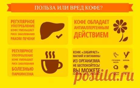 Полезные свойства кофе и возможный вред для организма человека, плюсы и минусы