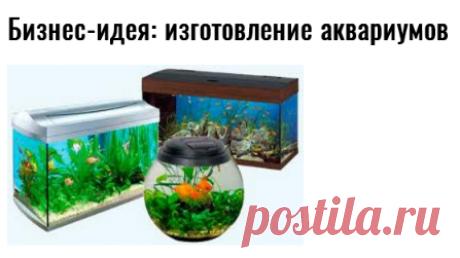 Бизнес-идея: изготовление аквариумов — Идеи для бизнеса