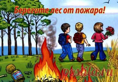 Картинки «Берегите лес от пожара» (32 фото) ⭐ Забавник