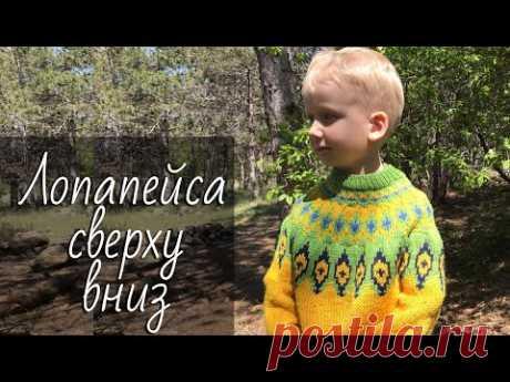 Лопапейса СВЕРХУ ВНИЗ. Исландский свитер с жаккардовой кокеткой. Мастер-класс по расчетам и вязанию.