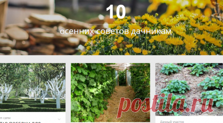 10 осенних советов дачникам - МирТесен
