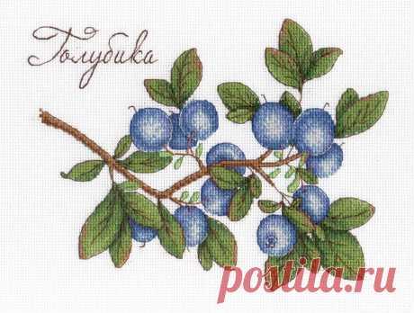 Набор для вышивания крестиком «Дары природы. Голубика». Артикул: НВ-617