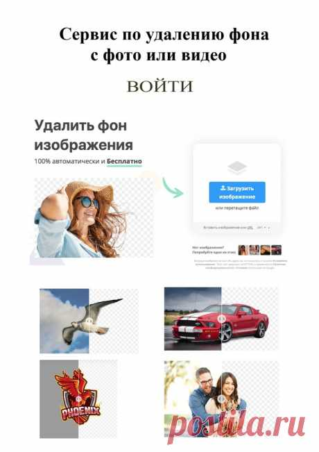 ФОТОГАЛЕРЕЯ | Smore Newsletters for Education