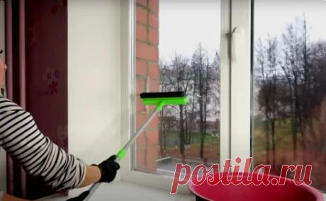 На моих окнах нет ни пыли, ни грязи. Простой трюк, которому меня научил мойщик окон, чтоб они всегда были чистые и прозрачные | У дачника в гостях | Яндекс Дзен