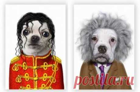 Животные изображают знаменитых людей Майкл Джексон и Эйнштейн...