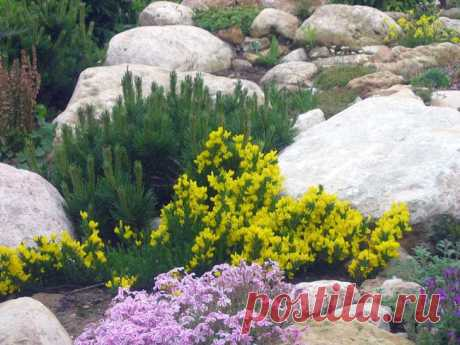 Sobre las faltas a la creación del montecillo alpino: el Grupo De paisaje