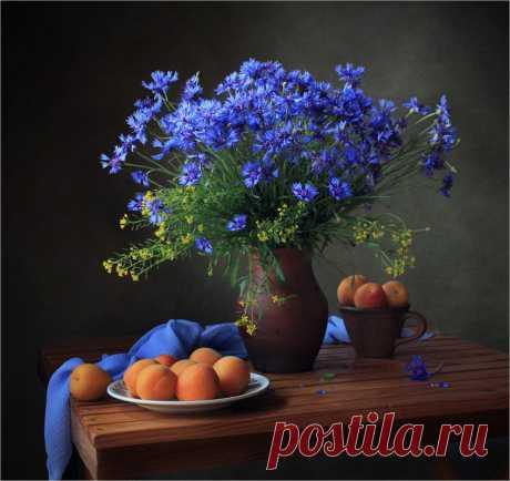 «фотонатюрморт с васильками и персиками» — карточка пользователя Вы в Яндекс.Коллекциях